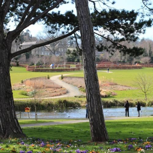 Parque de Cabinteely