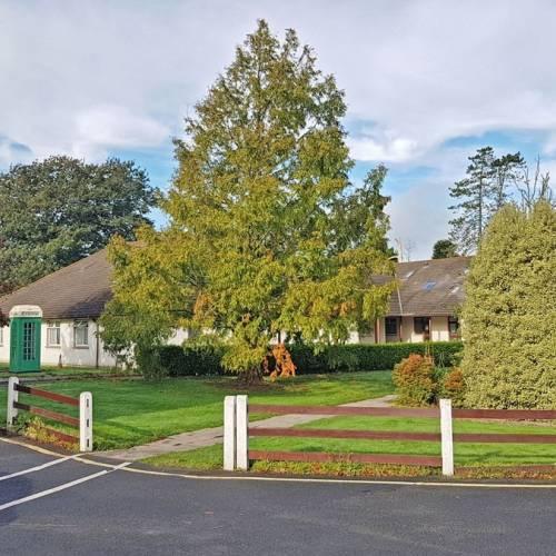 Newtown School 2018 - Waterford