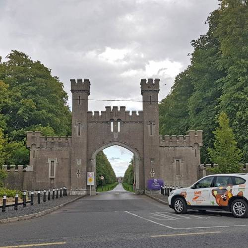 clongowes college